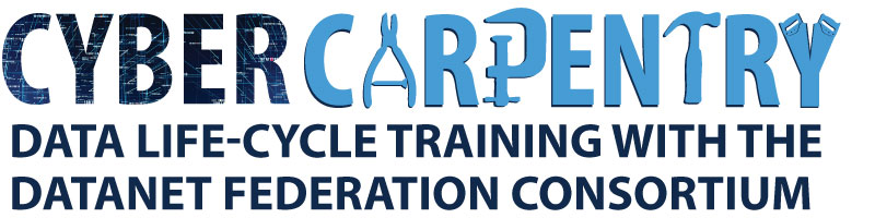 Cyber Carpentry: Data Life-Cycle Training with the Datanet Federation Consortium